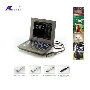 Laptop Veterinary Ultrasound Scanner (WHYB2018P)